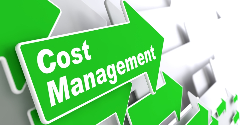 Cost Management - Business Concept. Green Arrow with Cost Management Slogan on a Grey Background. 3D Render.