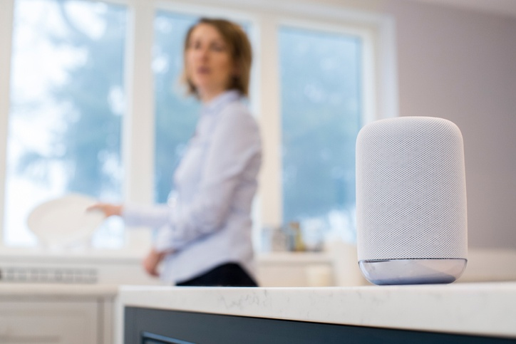 On-Target! Makreting | Digital Marketers In Houston | Half of Consumers Will Own a Smart Speaker in 2019, Study Predicts